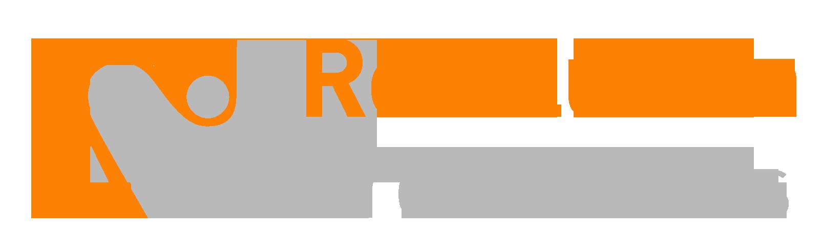 Revolution Productions weblogo orange